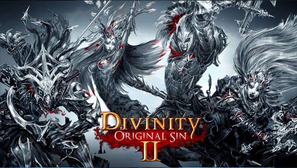 игра Divinity: Original Sin 1 и 2