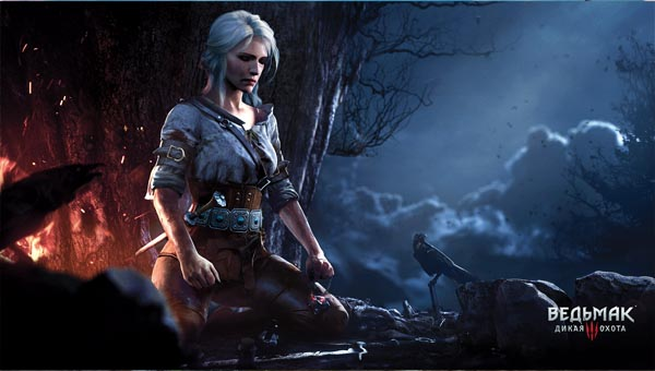 The-Witcher игра